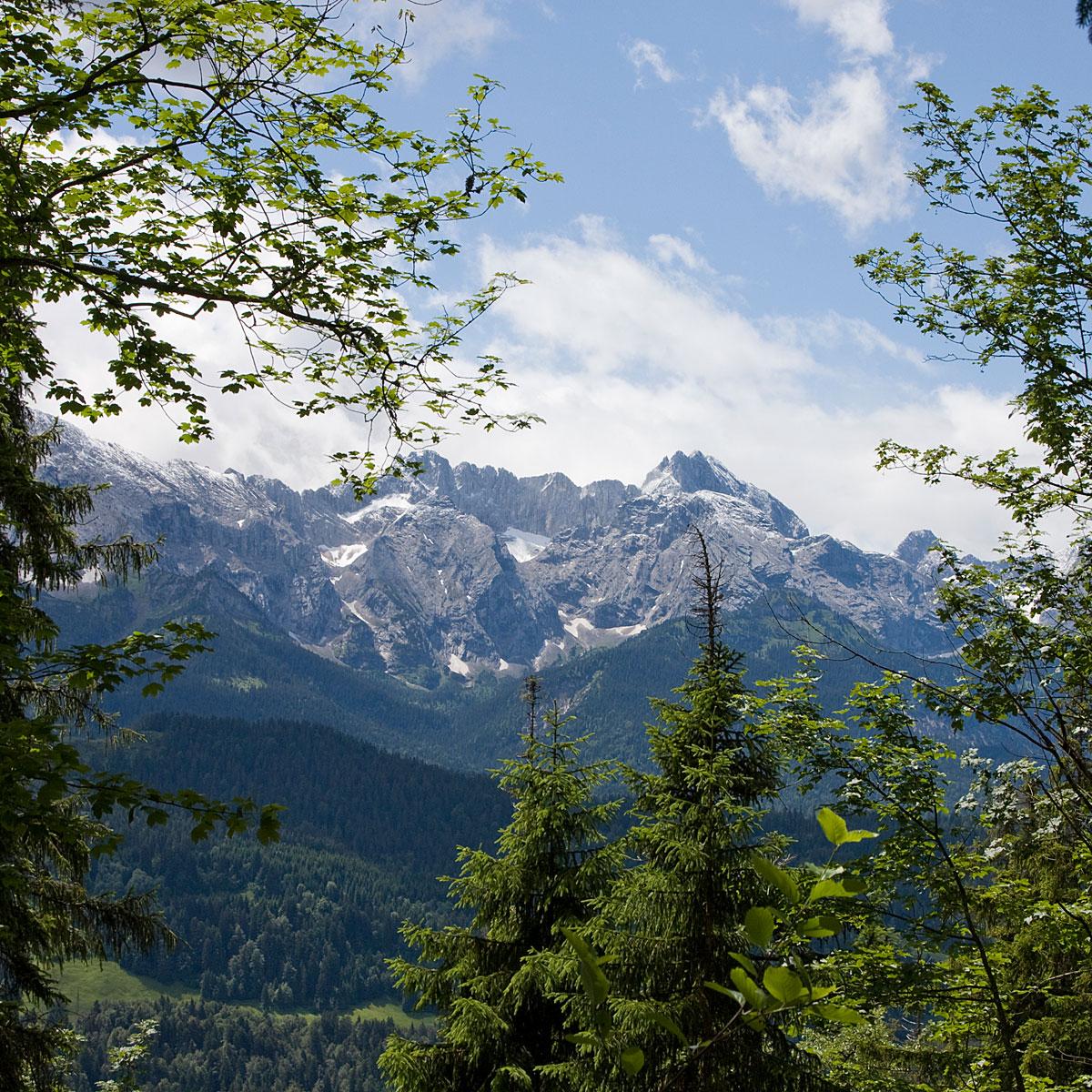 Artikelbild Tageswanderung über blühende Almwiesen mit toller Aussicht