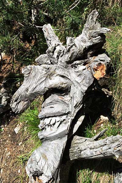 Artikelbild Sagenwelt Südtirol Dolomiten Rosengarten Schlern Schlernhexen