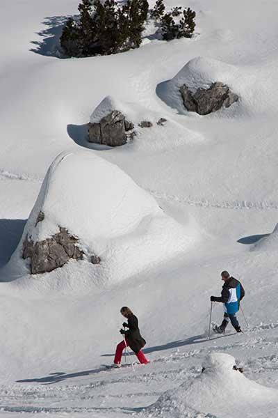 Artikelbild geführte Schneeschuhwanderungen