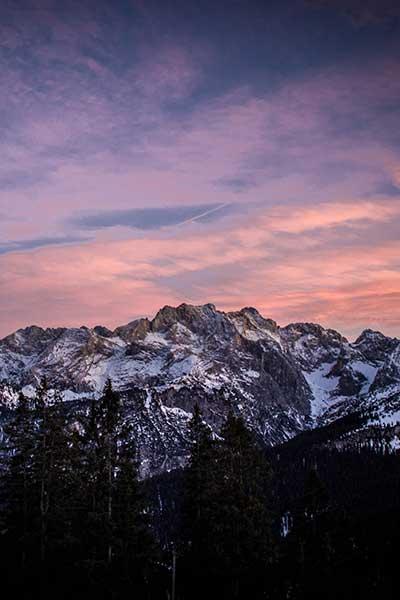 Artikelbild Steinbock Bergtouren Abendstimmung Dreitorspitze